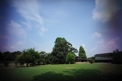 Dbb_9596_1