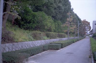 Scnc35af20024_2