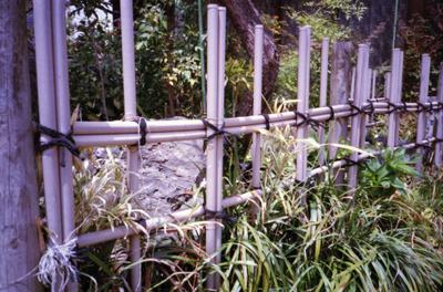 Scntiara20038_1