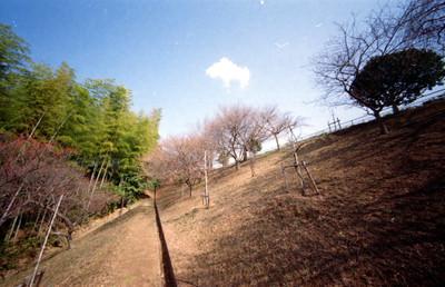 Scnleica3f1019_1