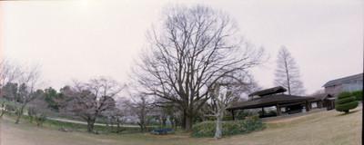Scnhorizon1502_1